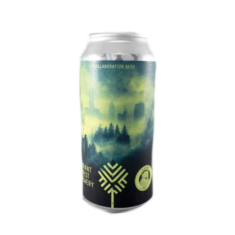 Vibrant Forest Misty Woods Collaboration
